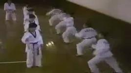 taekwondo koreanstiger - cop