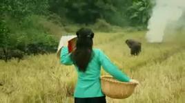 vo chong que (pham duy) - huong lan, quang linh