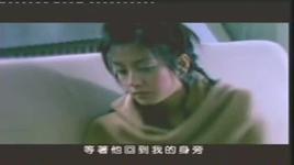 zhen xin bu jia - trieu vy (vicky zhao)