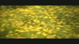 pho hoa xuan - nguyen vu