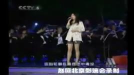 hua xin - hoa tam (hoa bi ost) (live, vietsub) - trieu vy (vicky zhao)