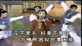 timi zhuo yi ting 19 - trac y dinh (timi zhuo), trac y dinh (timi zhuo)