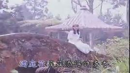 timi zhuo yi ting 16 - trac y dinh (timi zhuo), trac y dinh (timi zhuo)