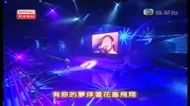 thien ha vo song (live) - truong luong dinh (jane zhang)