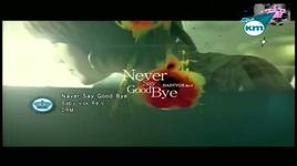 never say goodbye  - baby v.o.x re.v