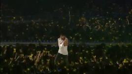 number 1 (big show 2010 live) - bigbang