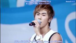 why did fall in love with you (vietsub) - dbsk