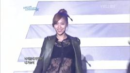 dream concert 2011 (breathe) - miss a