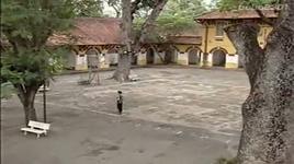 phuong hong - dan truong