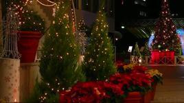 we wish you a merry christmas - dang cap nhat