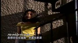 nguoi con gai de bi ton thuong - vuong phi (faye wong)