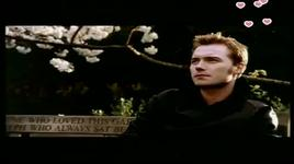 when you say nothing at all (vietsub khi em im lang) - ronan keating
