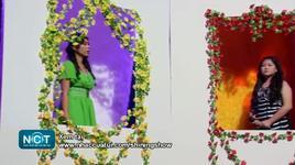 goodbye my love (shining show 12) - bich diem, diem trinh