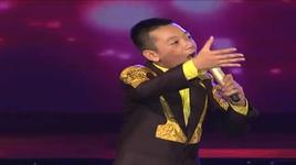 vu song vu (vietnam's got talent 2011 - dem chung ket) - v.a