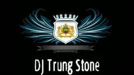 happy new year (remix 2013) - dj trung stone