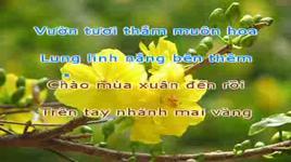chuc mung nam moi (karaoke) - dang cap nhat