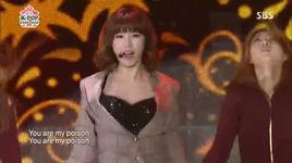 poison (130501 k-pop collection) - secret
