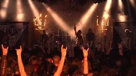 sworn to the dark (hellfest open air 2010) - watain