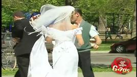 just for laughs gags - wedding pictures - vol 7 - v.a