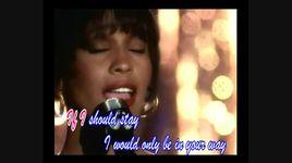 i will always love you (handmade clip)  - whitney houston