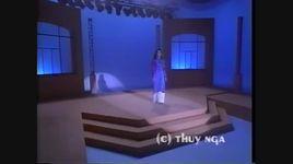 tinh nghia doi minh chi the thoi (live) - hoa mi