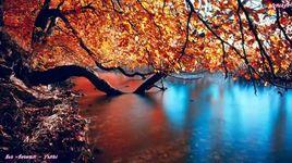 sad autumn (handmade clip) - yanbi