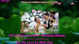 loi to tinh ong buom (lyrics, kara) - vu hung