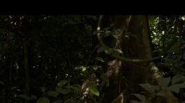 planet earth - tap 8 (vietsub) - v.a