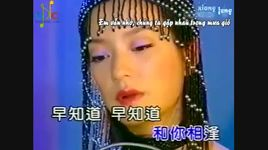 yen vu mong mong (tan dong song ly biet ost) (vietsub, kara) - trieu vy (vicky zhao)