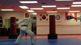 nhung don da tuyet dinh trong taekwondo - v.a