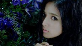 still - flower