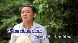 chom chom ly qua pha (handmade clip) - chien thang