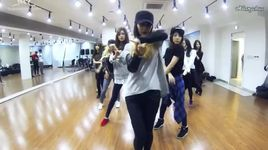 mr.mr. (dance practice) - snsd