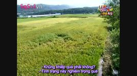 invincible youth - season 1 (tap 51) (vietsub) - v.a