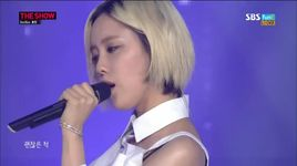 fake it (140812 the show) - hyomin (t-ara)