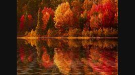 les feuilles mortes - autumn leaves - saxophone