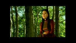 ly con sao tra vinh - dong dao