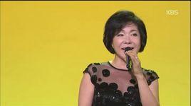 perfume (141201 gayo stage) - choi jin hee