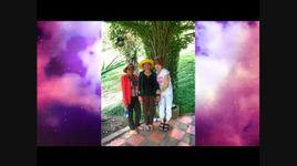 yeu em la dinh menh / tinh khuc vang (handmade clip) - cao thai son, dan truong