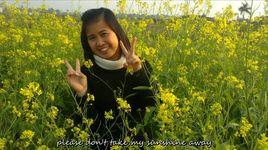 you are my sunshine (handmade clip) - elizabeth mitchell
