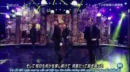 sakura (150220 music station) (vietsub) - arashi