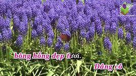 bong hong tang co (karaoke) - cadillac