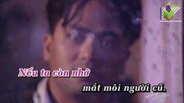 buon trong ky niem (karaoke) - nhu quynh