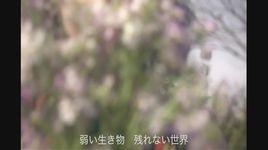 otonanarawakarudesho (lyric video) - dang cap nhat