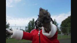 irresistible (starring doug the pug) - dang cap nhat