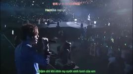 because i'm stupid (persona in japan) (vietsub, kara) - ss501