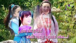 chuyen tinh la sau rieng (karaoke) - phi nhung