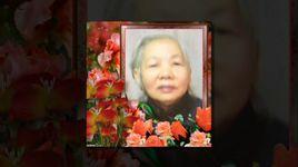 dao lam con (handmade clip) - dinh thuong