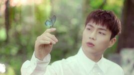 butterfly - beast