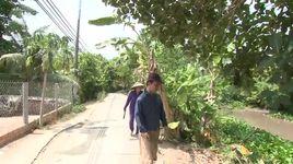 ngoi nha mo uoc (em tuan - dong thap - 2/7/2016) - v.a